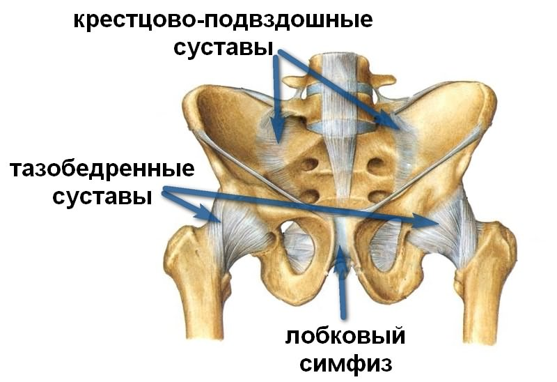 vahetuse artriidi sormed