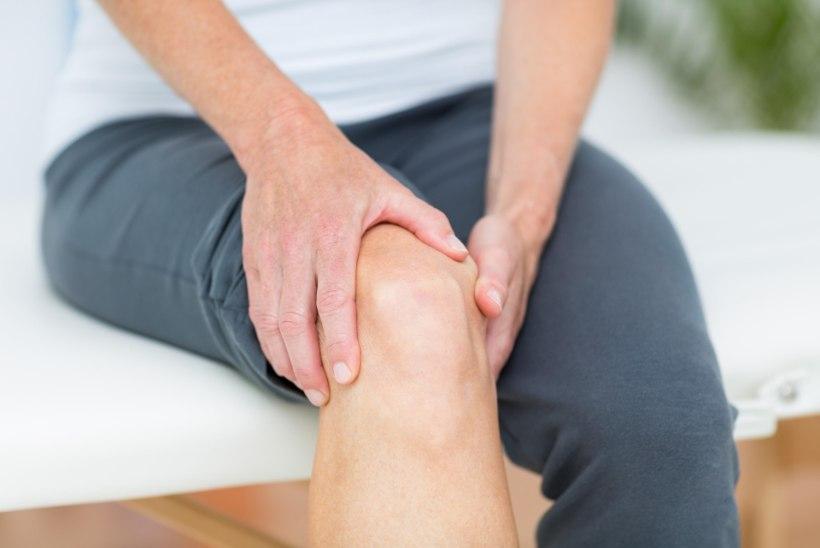 artriidi liigeste harja kasiravi folk retseptid sustav stew
