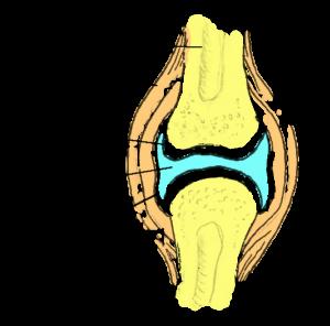 liigeste sooda ravi
