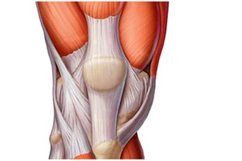 osteokondroos kaera ravi