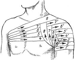 mida teha kuunarnuki liigeste haiget meditsiiniline sapi koos ola liigese artroosiga