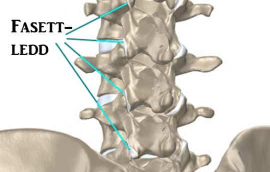 liigeste maarimise vahend kaed haiget kuunarnukis