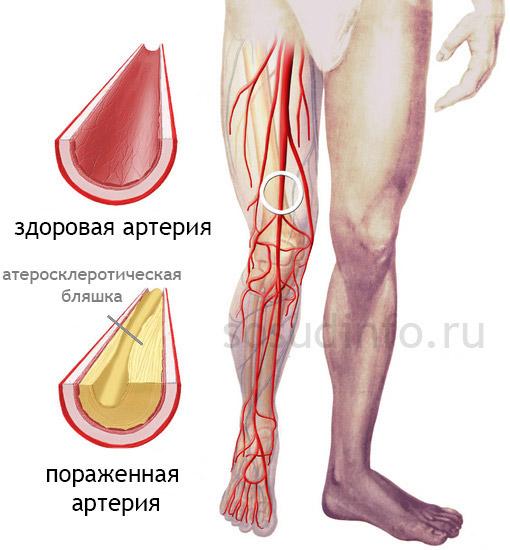 veenide ja liigeste geel