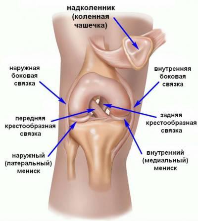 luu valus polve mineraalide raviks liigeste