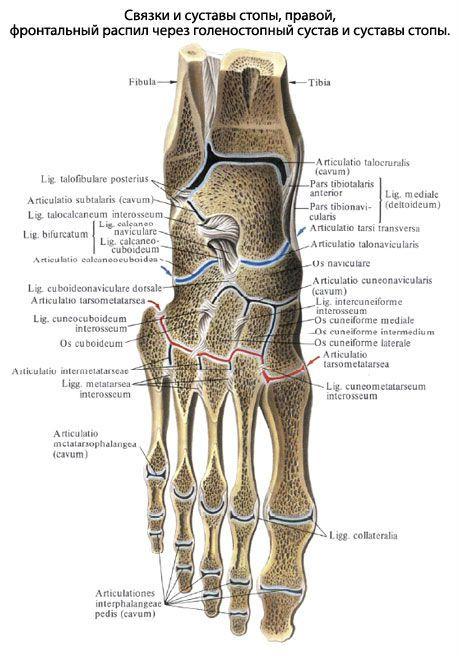 kuidas eemaldada poletik jalgsi valu ja pingete liigestes