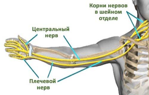 lihtus harja valutab mis valutab sormede liigeste